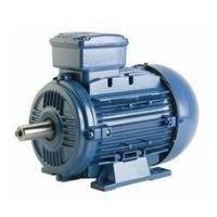 WEG motor trifásico 1.5 hp 3000 rpm